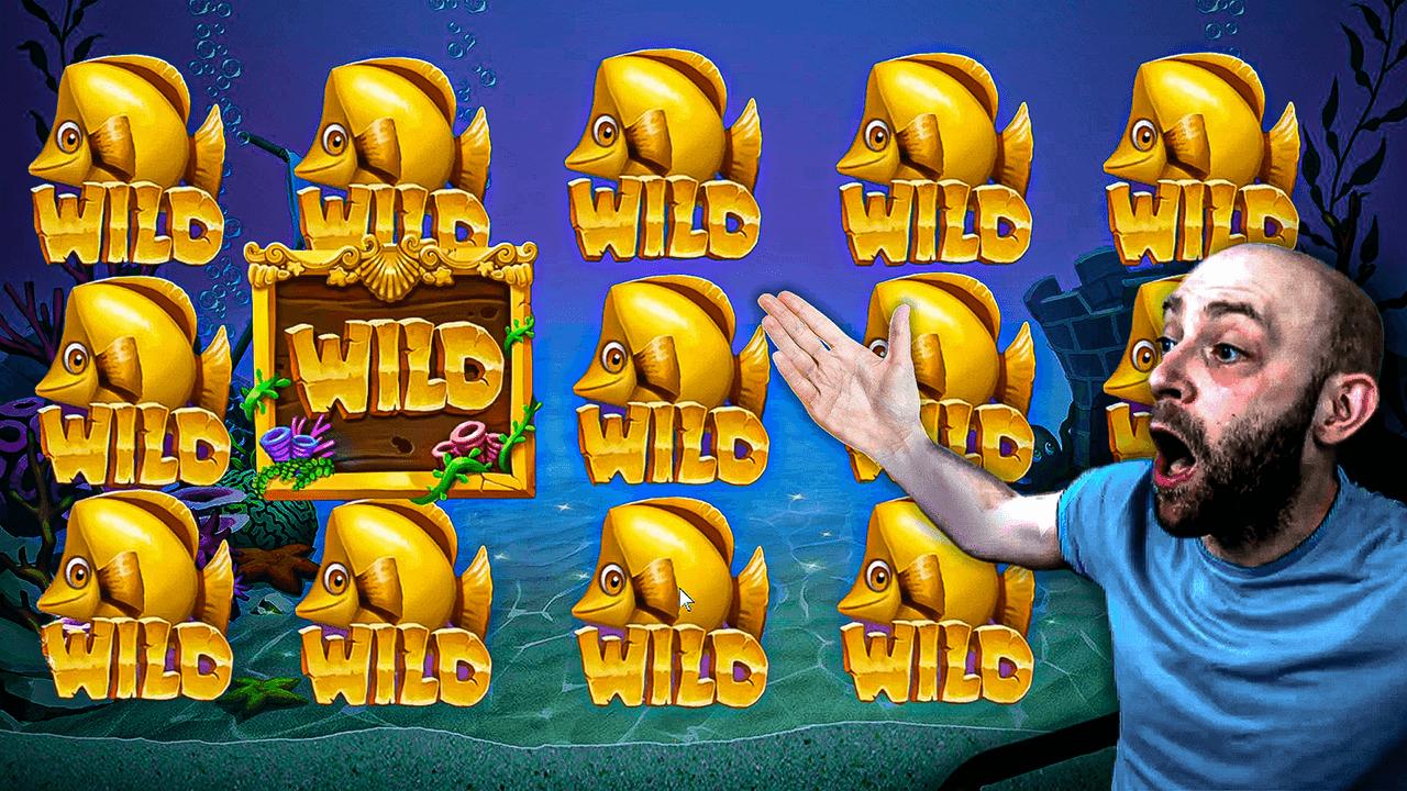 Golden Fish Tank: Huge Win